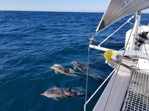 Wonderful memories sailing Sabella